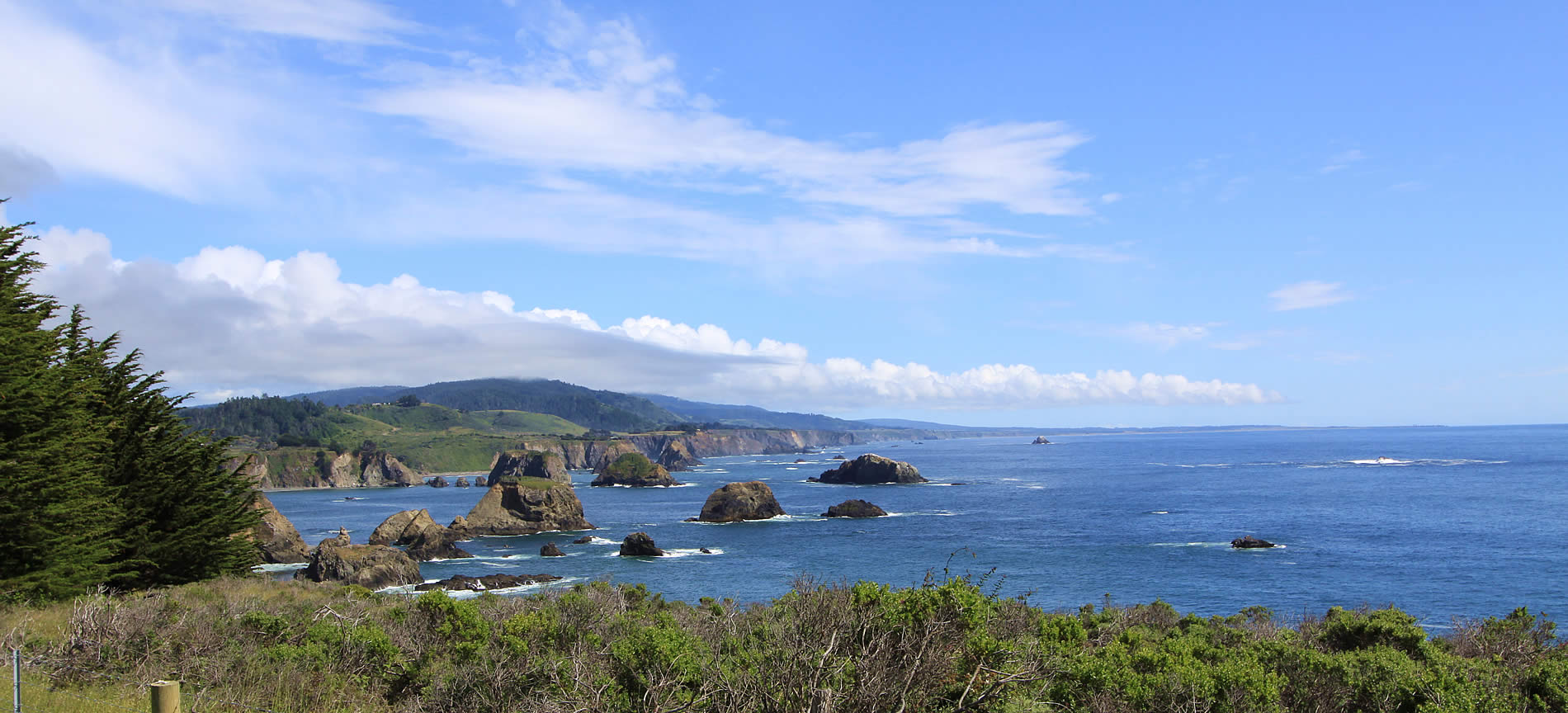 mendocino coast things to do